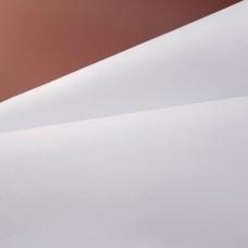 Кожа козлёнок Alran Sully белый 36 дм.