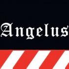 """Финиш для кожи Angelus №600 """"Clear Coat"""" 100 гр. в розлив. Цвет нейтральный."""